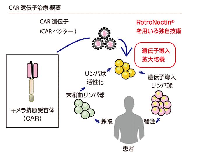抗体 キメラ